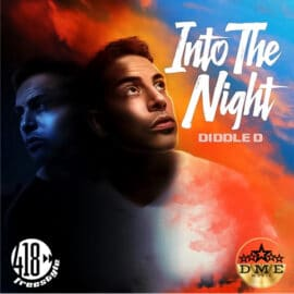 Into The Night by Diddle D